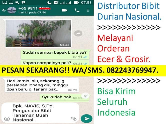 Bibit Durian Montong Di Majalengka,Bibit Durian Montong Disamarinda,Bibit Durian Montong Trubus,Bibit Durian Montong Banyumas